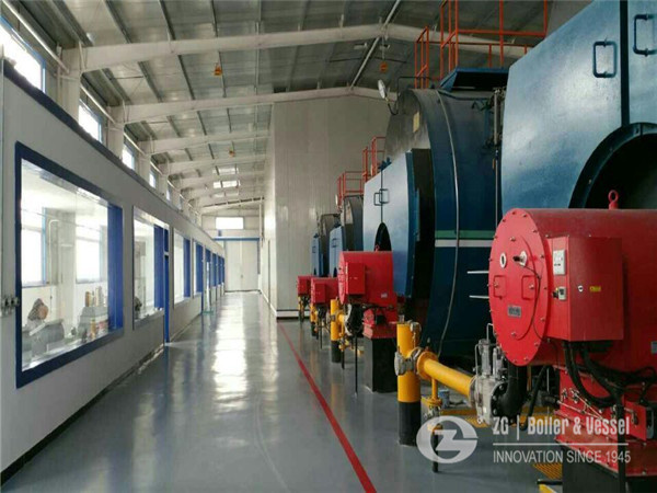 hospital fuel hot water fire tube boiler for sale